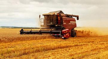 oferta - cordify group - branża rolnicza